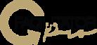 Facilitator Pro's Company logo