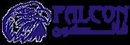 Falcon Media Production's Company logo