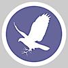 Falcontail Web Design's Company logo