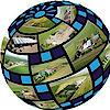 Cropshare's Company logo