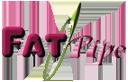 FatPipe's Company logo
