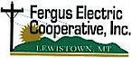 Ferguselectric's Company logo