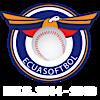 Federacion Ecuatoriana De Softbol's Company logo