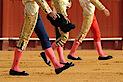 Ferias Taurinas Online - Corridas De Toros En Directo's Company logo
