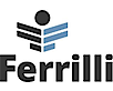 Ferrilli's Company logo