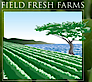 Field Fresh Farms's Company logo