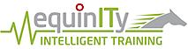 Fine Equinity's Company logo