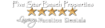 White Sand Vacation Rentals Destin Fl Beach House Private Pool's Competitor - Five Star Beach Properties logo