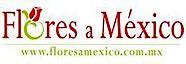 Floresamexico.com.mx's Company logo