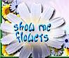 Flowergirls's Company logo