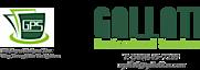 Gallati Professional Services's Company logo
