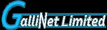 Gallinet's Company logo