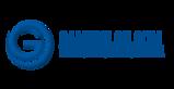 Gaminglon's Company logo