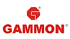 Gammon Infrastructure Projects's Company logo
