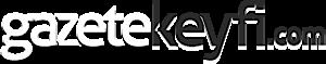 Gazetekeyfi, Info's Company logo