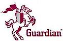 GFGI's Company logo