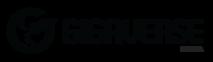 Gigaverse's Company logo