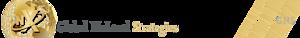Global Nxlevel Strategies's Company logo
