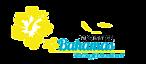 Go Connect Bahamas's Company logo