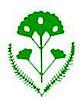 Golden Yarrow's Company logo