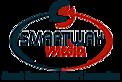 Great Option Guru's Company logo
