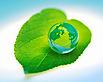 Green Car Uol's Company logo