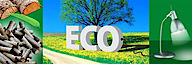 Green Fuel Vietnam Jsc's Company logo