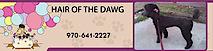 Hair Of The Dawg Pet Grooming Gunnison Colorado's Company logo