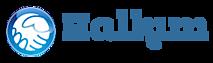 Halkim Avrupa - Mein Volk Europa's Company logo