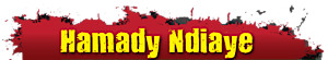 Hamady N'diaye's Company logo