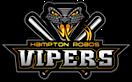 Hampton Roads Vipers Fastpitch Softball Competitors, Revenue