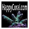 Happy Coral's Company logo