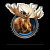 Happy Moose Photography's Company logo