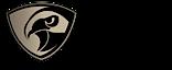 Hawk Vision India's Company logo
