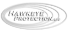 Tempe Security Cameras's Competitor - Hawkeye Protection logo