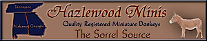 Hazlewood Miniature Donkeys's Company logo