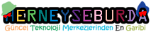 Herneyseburda's Company logo