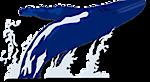 Hervey The Whale's Company logo