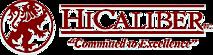 Hicaliber Inc's Company logo
