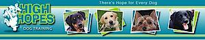 High Hopes Dog Training's Company logo
