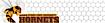 Friendsathletics's Competitor - Hornetsathletics logo