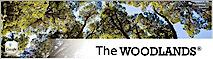 Eastshorewoodlands's Company logo