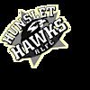 Hunslethawks's Company logo