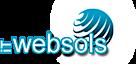 I T Websols's Company logo