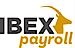 PaySavvy's Competitor - Ibex Payroll logo