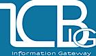 Icbig's Company logo