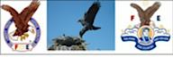 Idaho Falls Fratenal Order Of Eagles 576's Company logo