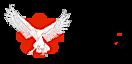 Iforcedojos's Company logo