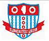 Illinois Bicycle Lawyers's Company logo