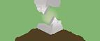 Impovac's Company logo